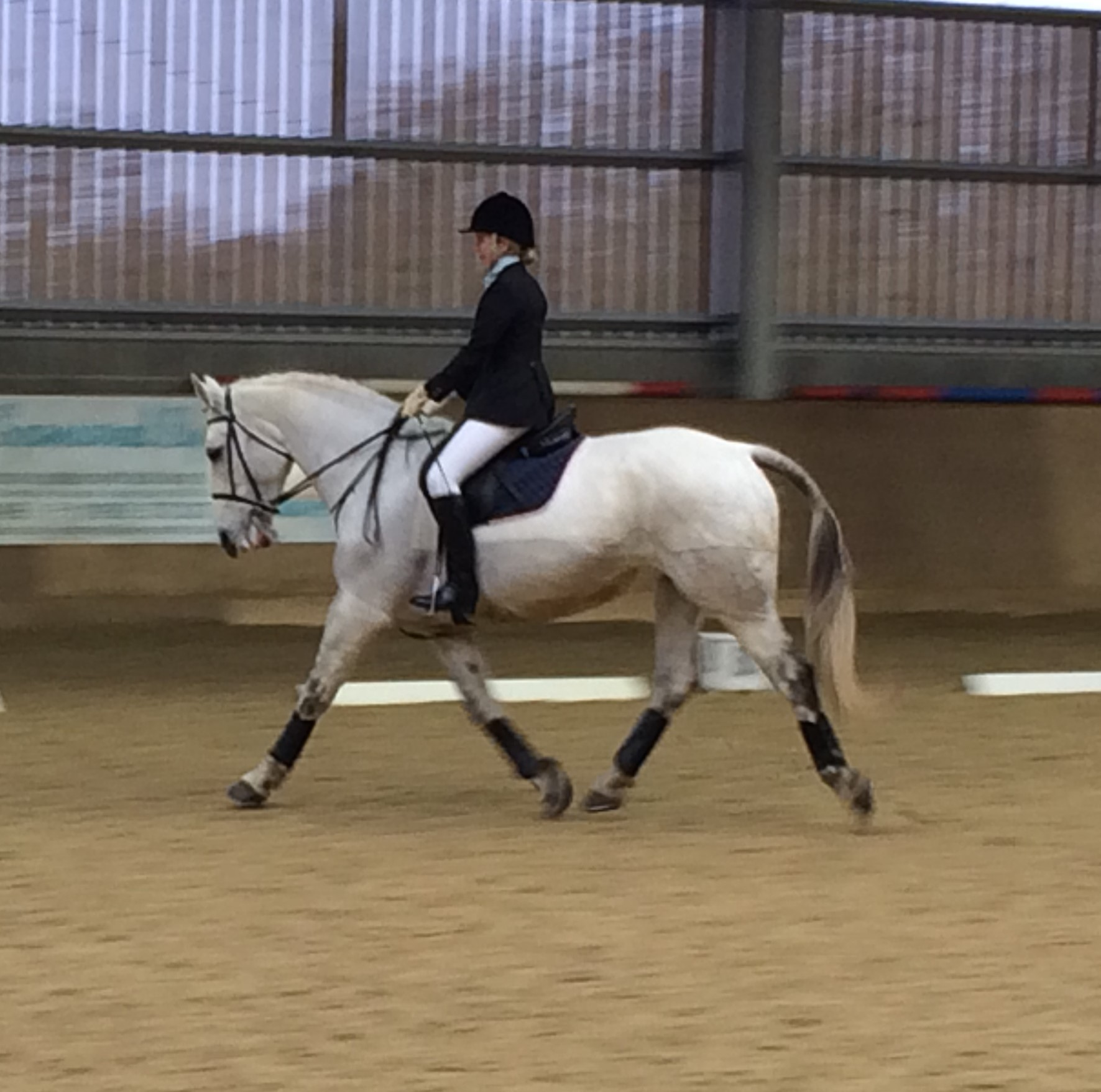 Captain Alice showing how it's done in the dressage phase