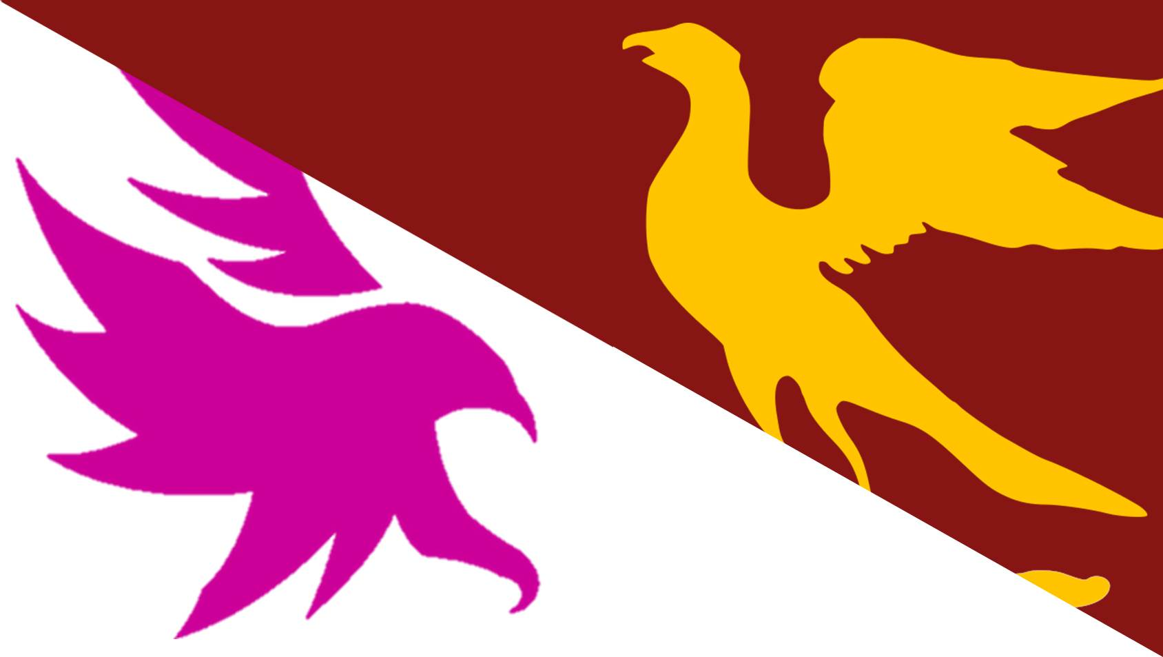 Hawks' & Ospreys