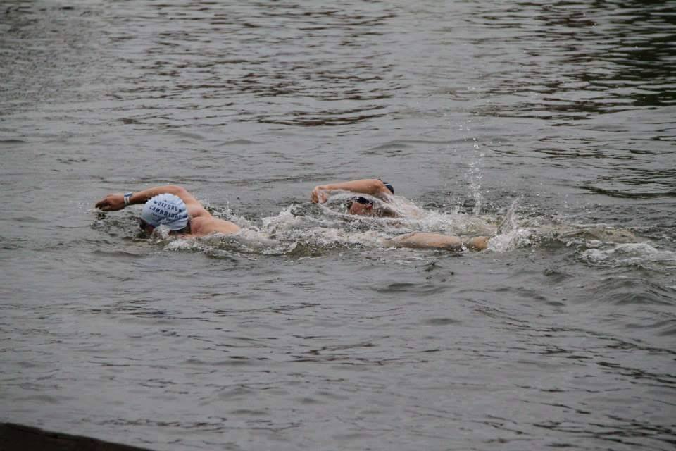 The Henley Swim Varsity Open Water Blue Bird Cambridge